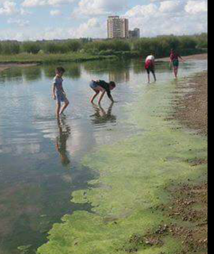 -Булган, Хөлөнбуйр сумаас Хэрлэн гол тасрахад хүрлээ гэсэн иргэдийн  мэдээлэл тасрахгүй байна. 7-р сарын дунд үеэс эхлэн усны эхэн хэсэгт хур ... cc8ab1bd0c6